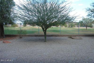 San Tan Valley Rental For Rent: 29237 N Yellow Bee Drive