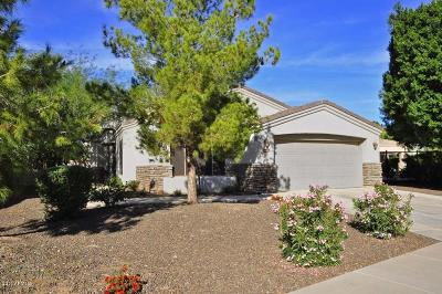 Phoenix Single Family Home UCB (Under Contract-Backups): 3922 E Carson Road