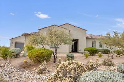 Scottsdale AZ Single Family Home For Sale: $1,075,000