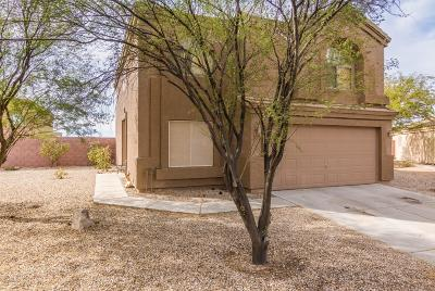 Florence Single Family Home For Sale: 24496 N Good Pasture Lane