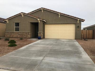 San Tan Valley Single Family Home For Sale: 1246 W Blue Ridge Drive