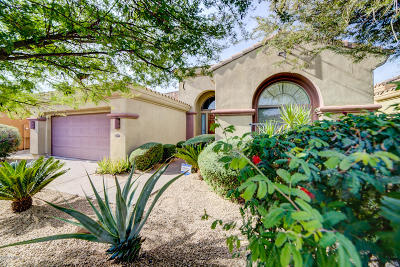 Phoenix Single Family Home For Sale: 22016 N 36th Street