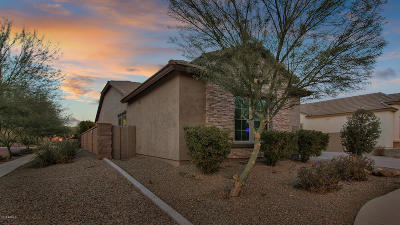 Chandler Single Family Home For Sale: 3810 E Powell Place