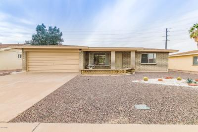 Mesa Single Family Home For Sale: 528 S Nassau