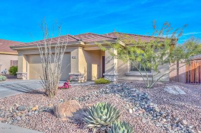 Anthem Single Family Home For Sale: 1732 W Turtle Hill Drive