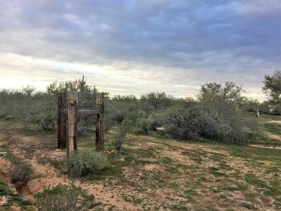 Scottsdale Residential Lots & Land For Sale: 311xx N 163rd Street