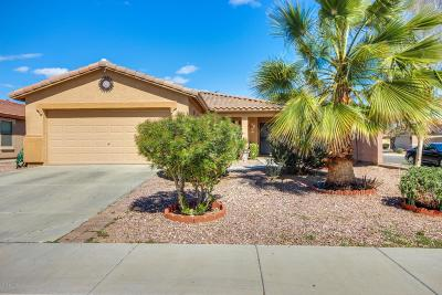 Buckeye Single Family Home For Sale: 24968 W Dove Trail