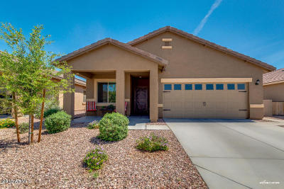 Avondale, Buckeye, Goodyear, Litchfield Park, Surprise Single Family Home For Sale: 261 S 225th Lane