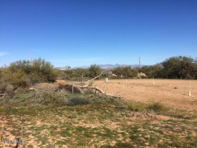 Rio Verde Foothills Residential Lots & Land For Sale: 29211 N 140th Street