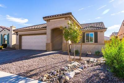 Chandler Single Family Home For Sale: 3951 E Augusta Avenue
