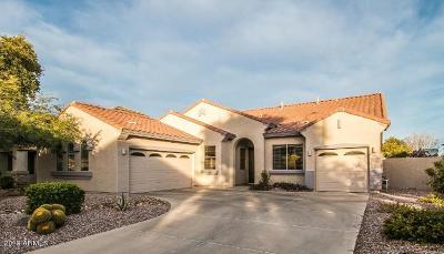 Chandler Single Family Home For Sale: 2628 E Firestone Drive