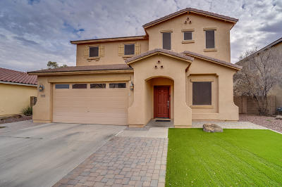 Maricopa Single Family Home For Sale: 20293 N Ryans Trail