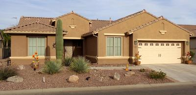 Eloy Single Family Home For Sale: 5441 N Pioneer Drive