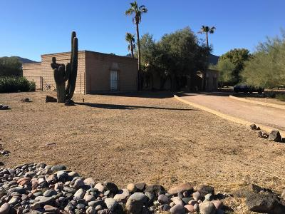 Paradise Valley Single Family Home For Sale: 8047 N Ironwood Drive