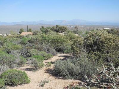 Cave Creek Residential Lots & Land For Sale: Lot 109 E Hohokam Road E