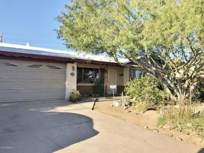 Tempe Single Family Home For Sale: 7 E Papago Drive