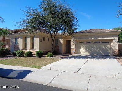 Chandler Rental For Rent: 2544 S Four Peaks Way