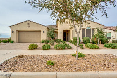 Mesa Single Family Home For Sale: 5538 S Abbey