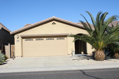 San Tan Valley Single Family Home For Sale: 1506 E Lakeview Drive