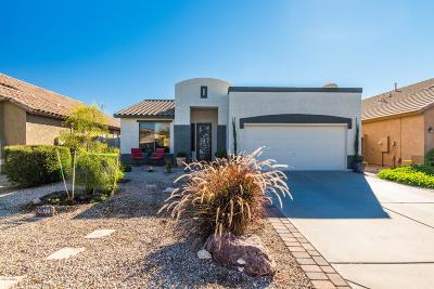 San Tan Valley Single Family Home For Sale: 29711 N Little Leaf Drive
