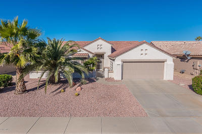 Surprise Single Family Home For Sale: 20150 N Sonoran Court