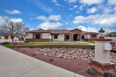 Queen Creek Single Family Home For Sale: 21391 E Orchard Lane