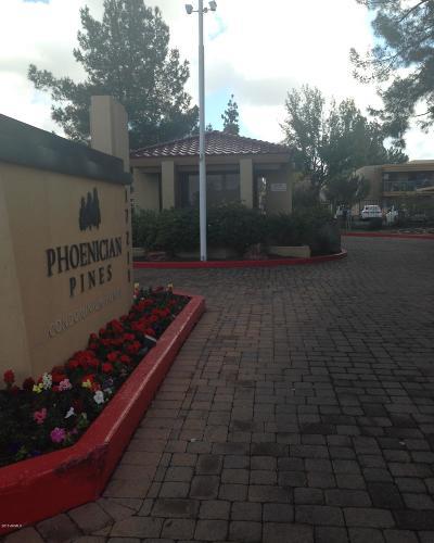 Phoenix  Apartment For Sale: 3330 W Danbury Drive #E106