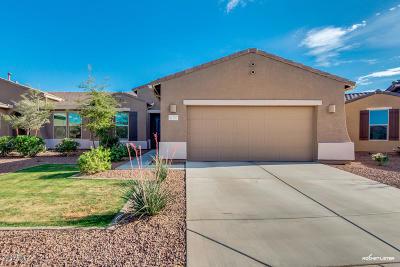 Maricopa AZ Gemini/Twin Home For Sale: $229,500