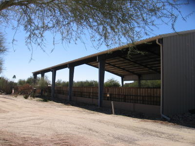 Cave Creek Single Family Home For Sale: 5725 E Lone Mountain Road