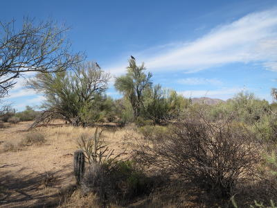 Scottsdale Residential Lots & Land For Sale: 15xxx E Dixileta Drive