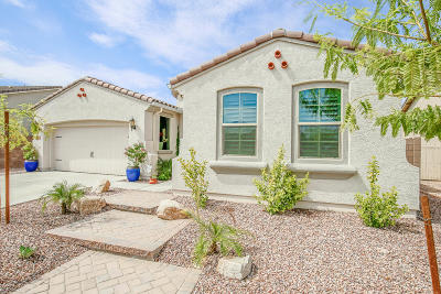 Peoria Single Family Home For Sale: 9011 W Diana Avenue