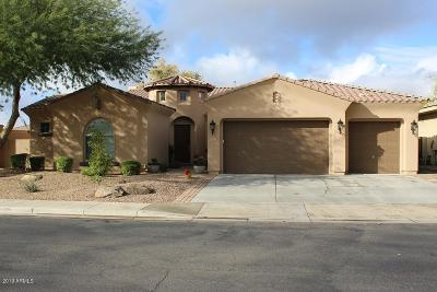 Chandler Single Family Home For Sale: 5222 S Miller Place