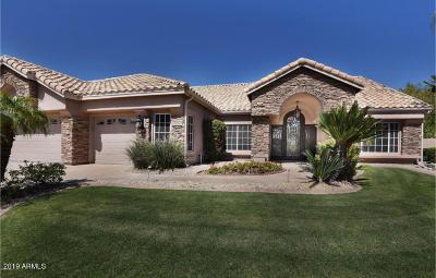 Phoenix Single Family Home For Sale: 2560 E Desert Willow Drive