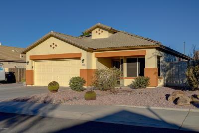 Single Family Home For Sale: 3788 E Thunderheart Trail
