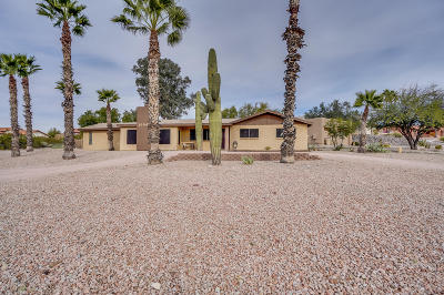 Fountain Hills Single Family Home For Sale: 16942 E El Pueblo Boulevard