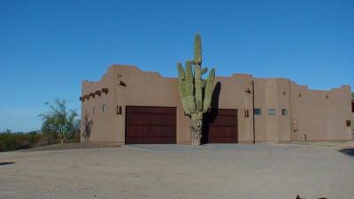 Wittmann Single Family Home For Sale: 21434 W Restin Road