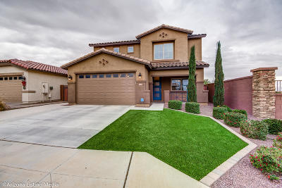 Queen Creek Single Family Home For Sale: 41450 N Soap Berry Street