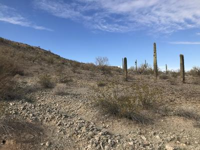 Salome Residential Lots & Land For Sale: 50150 Government Mine Road