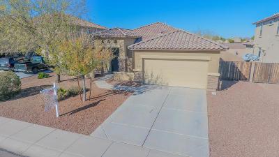 Avondale Single Family Home For Sale: 11406 W Alvarado Road