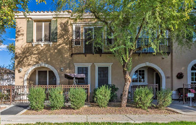 Gilbert Condo/Townhouse UCB (Under Contract-Backups): 2724 S Voyager Drive #101
