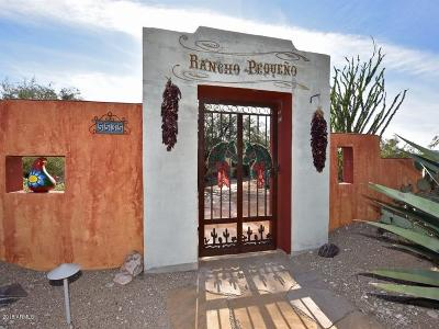 Cave Creek Single Family Home For Sale: 5535 E Morning Star Road