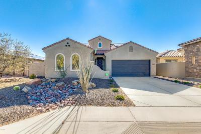Maricopa Single Family Home For Sale: 36135 W Merced Street