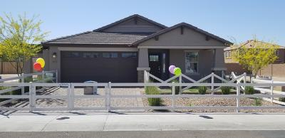 Goodyear Single Family Home For Sale: 16185 W Winslow Drive
