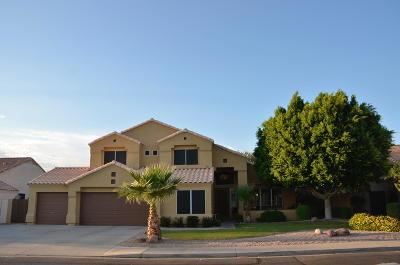 Mesa Single Family Home For Sale: 9620 E Idaho Avenue