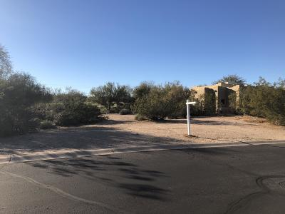 Rio Verde Residential Lots & Land For Sale: 27414 N Agua Verde Drive
