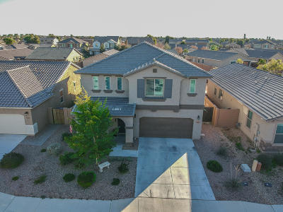 Maricopa Single Family Home For Sale: 40803 W Wade Drive