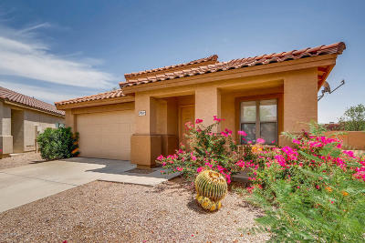 Cave Creek Single Family Home For Sale: 29011 N 51st Place