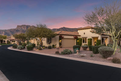 Gold Canyon Single Family Home For Sale: 2853 S Lookout Ridge