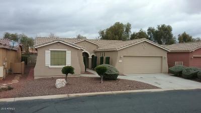 Maricopa AZ Single Family Home For Sale: $289,000