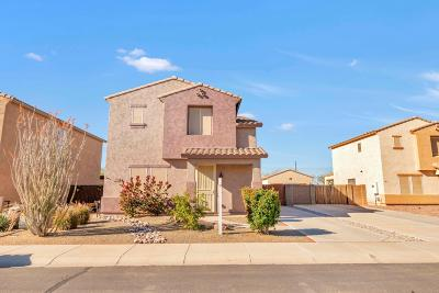 Florence Single Family Home For Sale: 29900 N Cholla Drive